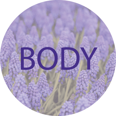 Display picture with the word Body on it and a lavender background