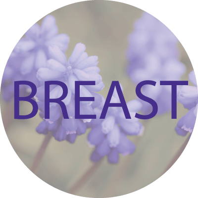 Display picture with the word Breast on it and a violet flower background
